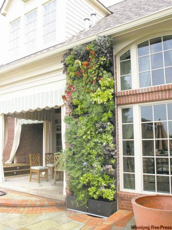 LivePanel LivePanel is a custom plant wall system for all indoor and outdoor  spaces