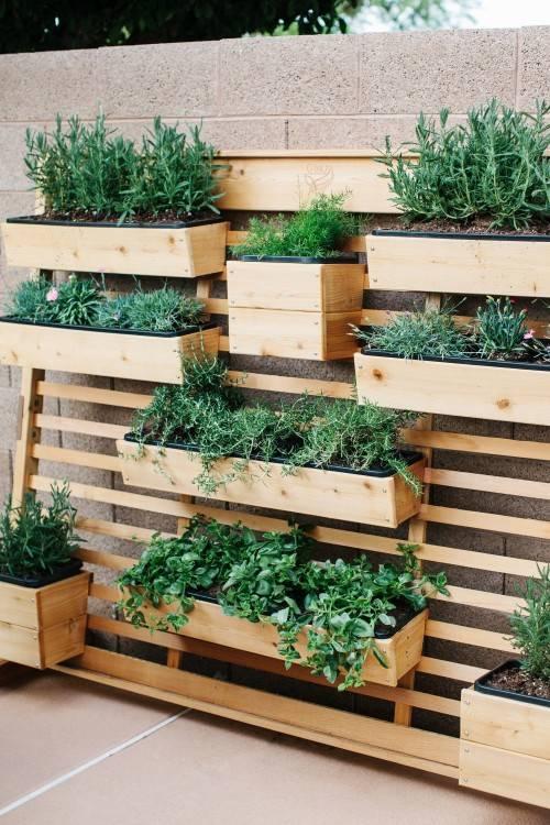 living wall outdoor outdoor living wall alfresco garden ideas patio  contemporary with living wall outdoor alfresco