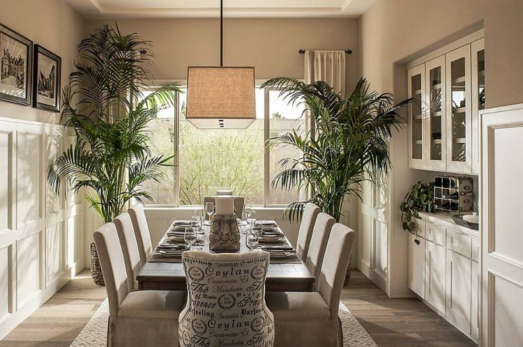 living room with plants dining room plants plants decoration living room  living room plant decor living