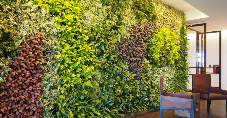 green wall plants artificial living wall decorative indoor plants home garden decking green wall plants philippines