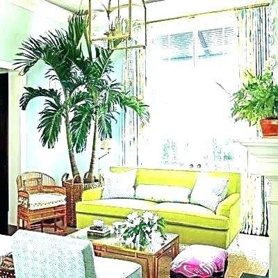 tropical room decor