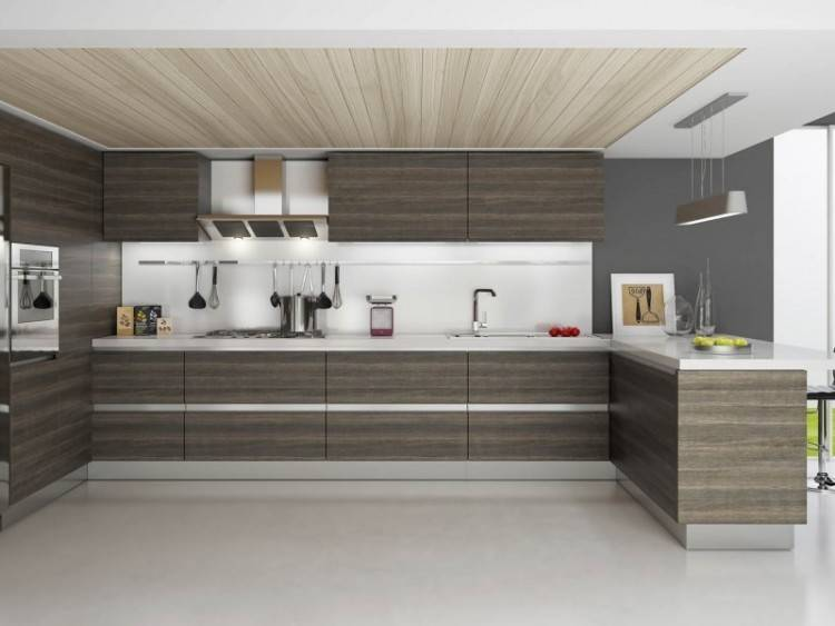 Modular Kitchen Cabinets Usa Luxury Indian Kitchen Designs Gallery Fresh 8 Best New Modular