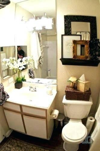Bathroom Decor Ideas For Apartments Home Interior Design Ideas 2017 Fabulous Small Apt Bathroom Design Ideas