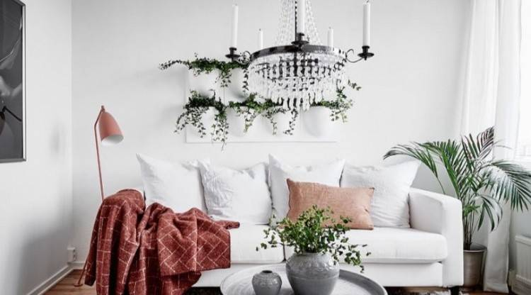Wonderful Living Room Plants With Comfortable White Sofa And Rack Tv  Unit With Square