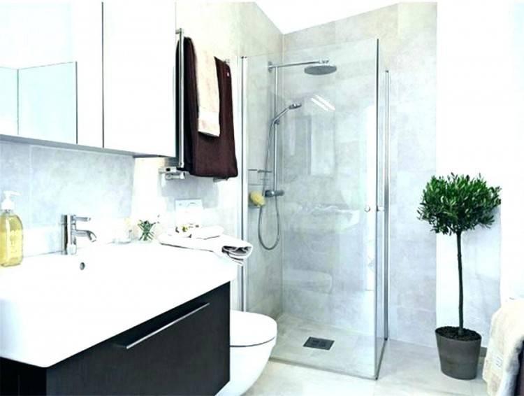 Small Apartment Bathroom Ideas Small Rental Bathroom Makeover 2 Not A Passing Fancy More Small Apartment Bathroom Design Ideas – carnetdebord