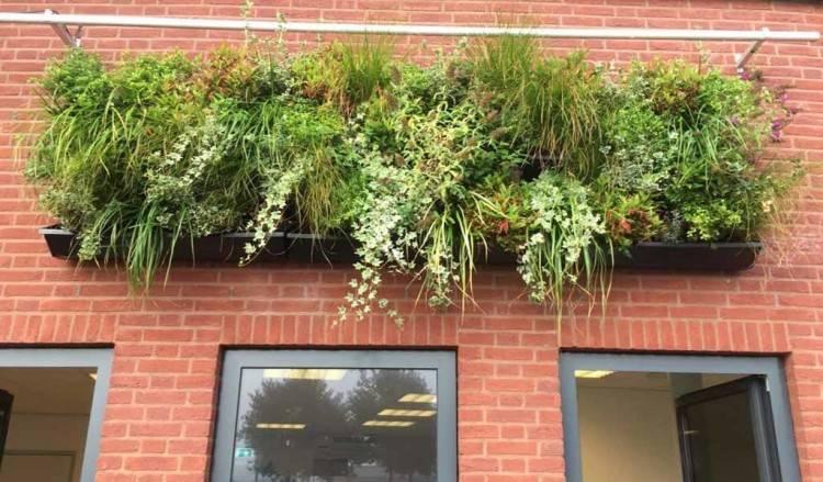 living herb wall herb wall planter living wall planter herb wall planter  wall garden planters indoor