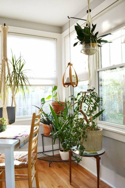 Bring The Outdoors In With Our Favorite Ways To Display House Plants |  Freshome