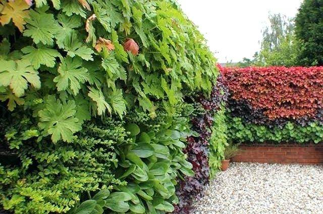 Outdoor Living Walls using the GLTi system (images courtesy of GLTi)