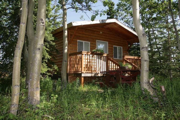 Home Glamping Pods & Cabins Glamping Pods & Cabins Glamping pods without  shower rooms Pods and cabins with shower rooms Garden rooms &  officeFeatures