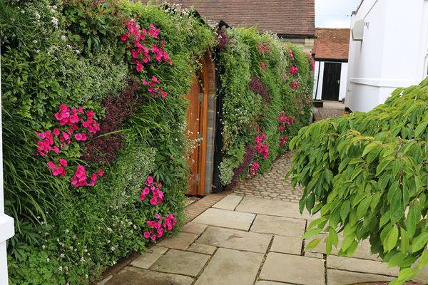 Instant drama is created with an outdoor living wall that can be changed  with the seasons